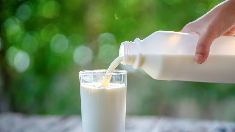 Manakah Susu Yang Mengandung Vitamin B Yang Banyak? Berikut Jawabannya